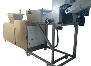 Continuous mass feeder L-500